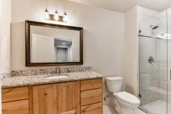 4010 Rock Creek Dr Fort-large-015-32-Bathroom-1491x1000-72dpi